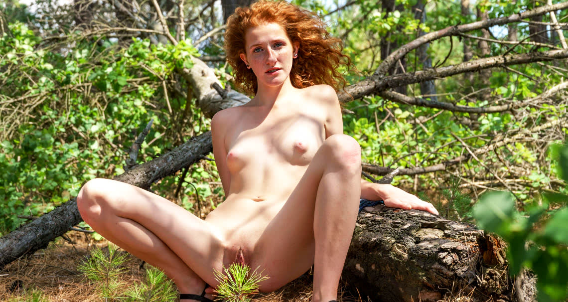 Ginger in nature