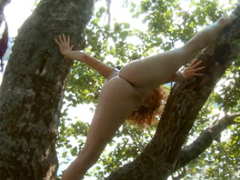 Melissa is up in a tree